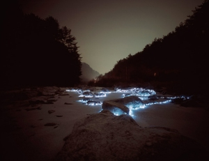 night-light-installations-2