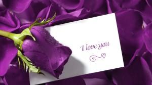 Love-wallpaper-with-blue-rose-or-love-letter-wallpaper
