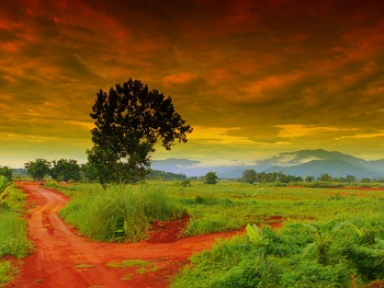 road_nenapinasanchi